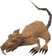 Angry giant rat.png