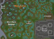 Mort Myre Swamp Mapa