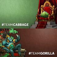 Team Gorilla vs Team Cabbage