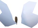 Sapphire glacialis (Hunter)