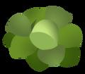 Brassica Prime simbolis