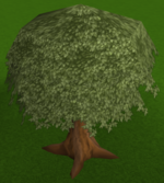 Nice tree built.png