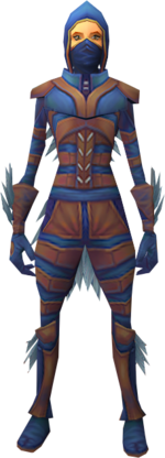 Nimble outfit equipped.png