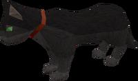Pet cat (black) pet.png