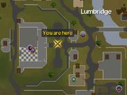 Lumbridgecastlemap