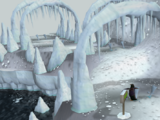 Penguin Agility Course
