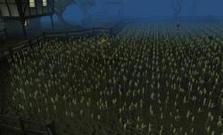 Grain field.png