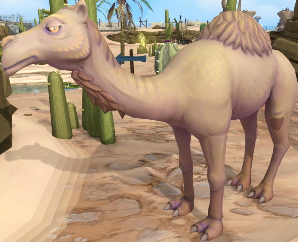 Ali, o camelo