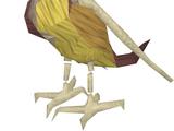 Ex-ex-parrot