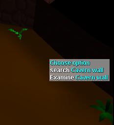Cavern wall.png