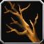 Quest branch01.png