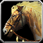 Icon - Piebald Horse.png