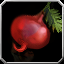 Icon - Special Fruit.png