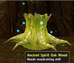 AncientSpiritOakWood.jpg