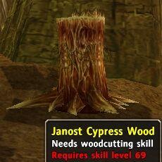 JanostCypressWood.jpg