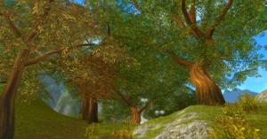 Sevaida Woods.png
