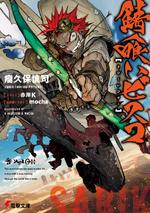 Light Novel 01