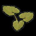 Pumpkin Plant Clone.png