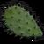 Cactus Flesh.png