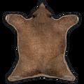 Rug Bear Skin.png