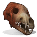 Wolf Skull.png