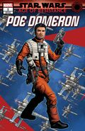 Age of Resistance Poe Dameron Puzzle variant