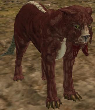 Гарр-кот