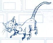 Coruscant sewer rat Journal