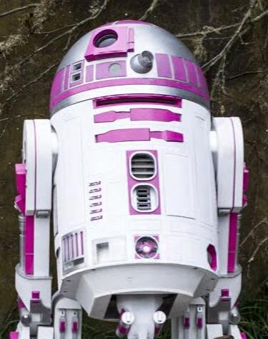 R2-KT/Канон