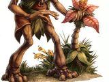 Иторианцы
