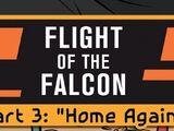 Полёт «Сокола», часть 3: Снова дома