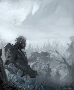 Clone commandos grey.jpg