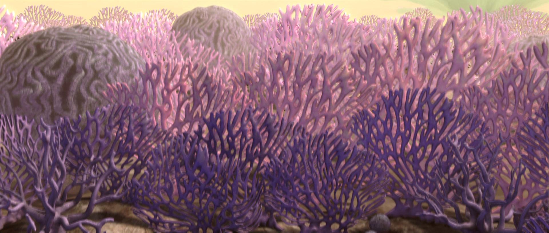 Rugosa land coral.png