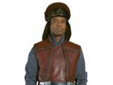 Королевские силы безопасности Набу