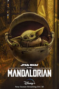 The-mandalorian-season-two-the-child-character-poster-y3972r9fw