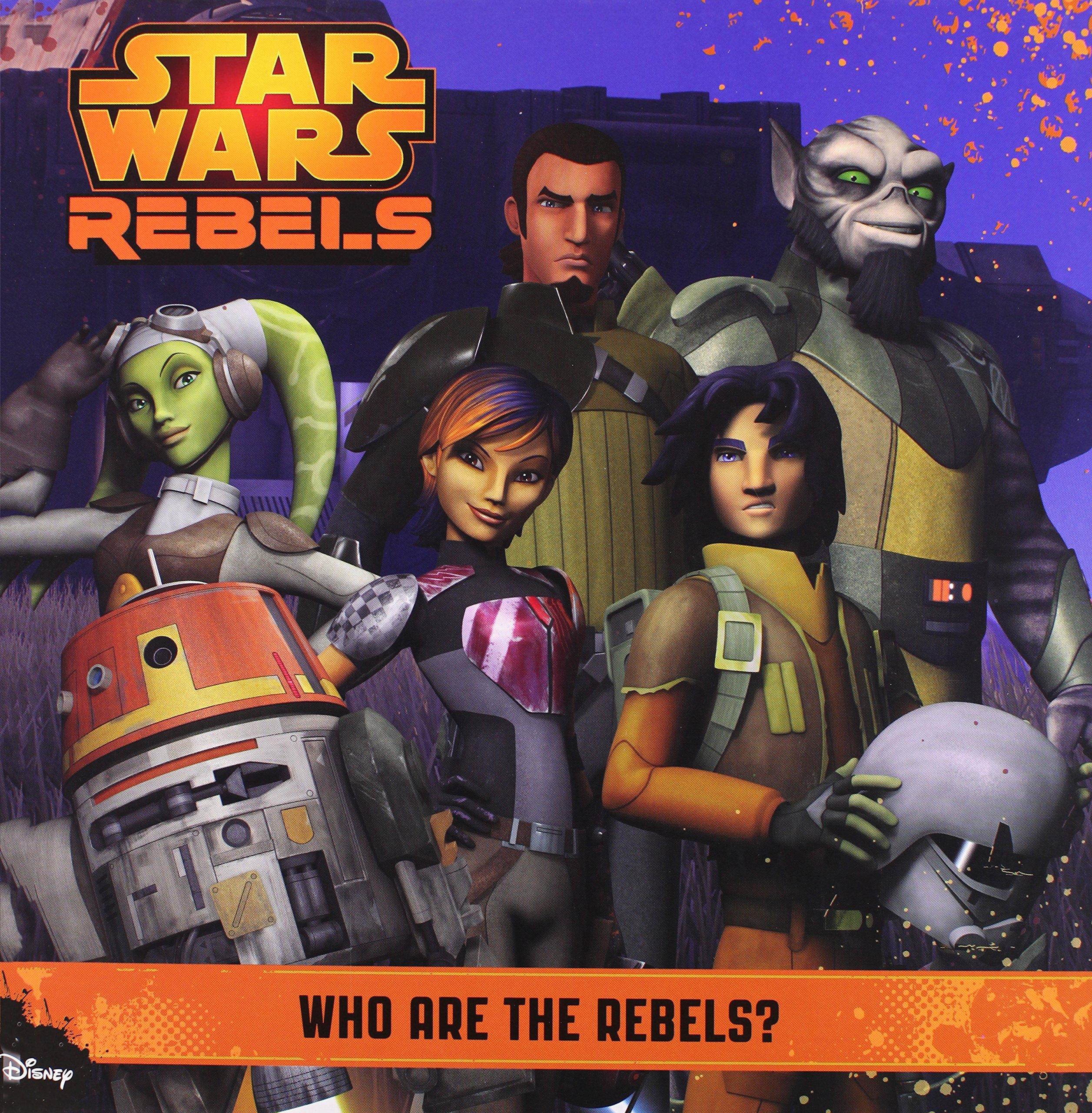 Кто такие повстанцы?