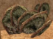 Paddle cacti-SWG