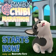 RWBY Chibi Marathon promotional material of Zwei