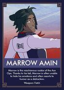 Meet the Ace Ops - Marrow