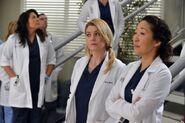 Greys-Anatomy-Season-10-Episode-14-You've-Got-to-Hide-your-Love-Away-600x399