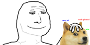 Smugwojakdoge