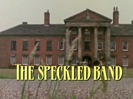 Das gefleckte Band (Film, 1984)