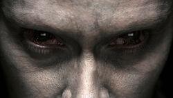 Dolores Glockner Augen