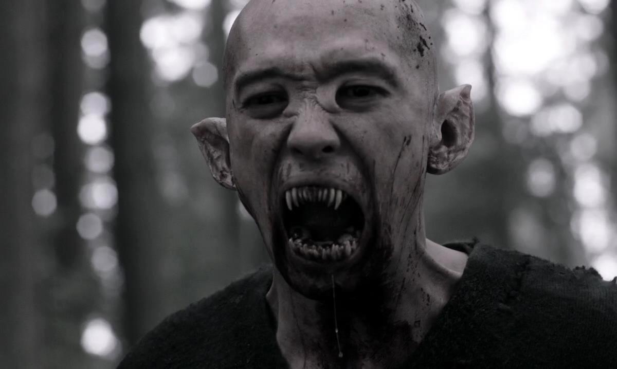 Vampire (Apokalypse Welt)