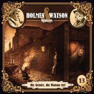 Holmes & Watson Mysterys 13
