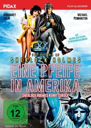 Eine Pfeife in Amerika DVD.jpg
