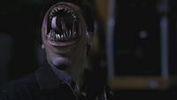 """Edgar mit """"offenem Mund"""""""