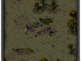 Сгоревший торговый пост