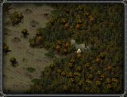 Мурбрук, пещера (северо-восточная) 3