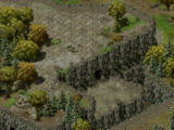 Охотник и жертва